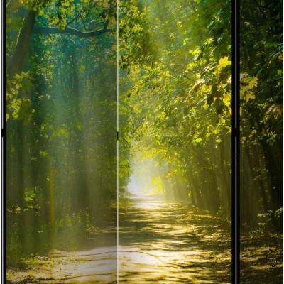 Biombo de 5 hojas Camino al Sol 225x172 cm