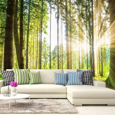 Fotomural para pared gran formato Bosque dorado